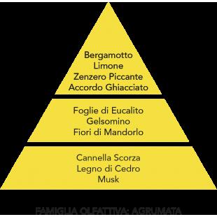 DIFFUSORE D'AMBIENTE GHIACCIO E ZENZERO