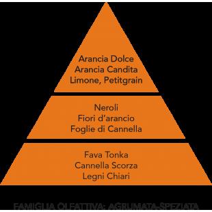 DIFFUSORE D'AMBIENTE ARANCIA CANDITA