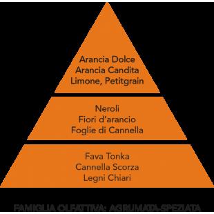SPRAY AMBIENTE ARANCIA CANDITA