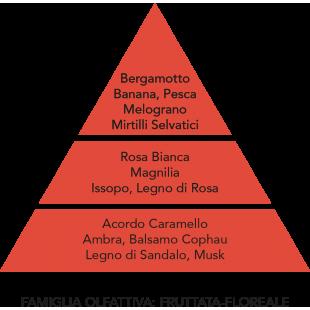 RICARICA DIFFUSORE AMBIENTE MELOGRANO E MIRTILLO